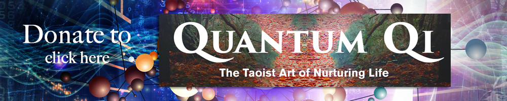 quantum qi